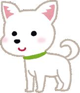 dog_chihu_sm